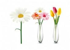 花朵与花瓶矢量素材