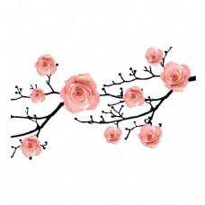 一枝花朵png元素