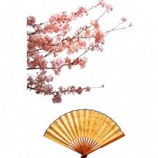 中国风水墨花朵扇子元素