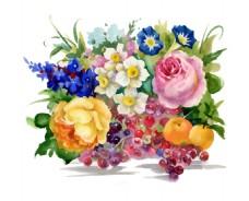 水果花束花朵水彩手绘矢量文件