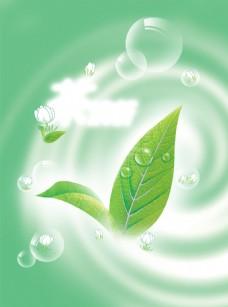 茶清香绿色背景