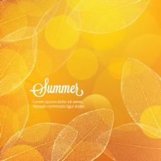 梦幻唯美夏季秋季光效叶子背景素材