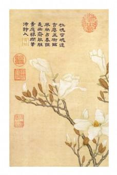 手绘古典花朵装饰画
