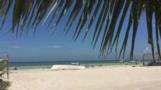 热带沙滩风景视频