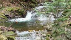 溪水河流视频素材