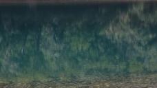 青色的河水视频