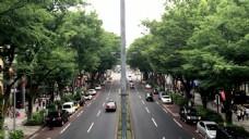 城市大马路建筑风景