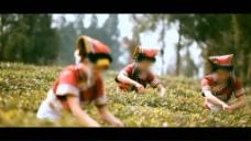 采茶人物视频素材