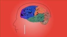 人物大脑医疗视频