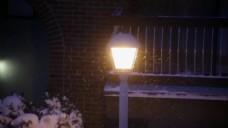 室外路灯视频素材