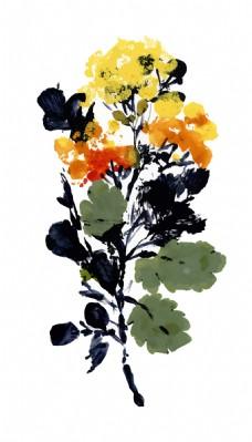 黄色植物花朵水彩手绘矢量文件