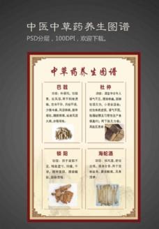 中医中草药养生图谱
