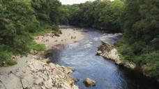 小溪河水风景视频