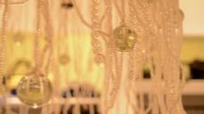 珍珠装饰视频素材