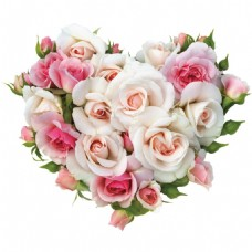 心形玫瑰花png元素