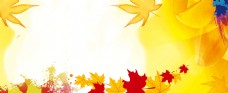 小清新枫叶黄色二十四气节图