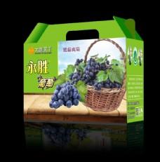 葡萄平面设计图