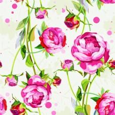 水彩绘唯美牡丹花背景