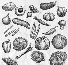 21款手绘蔬菜矢量背景