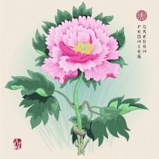 手绘中国风牡丹花图形花纹VI设计矢量