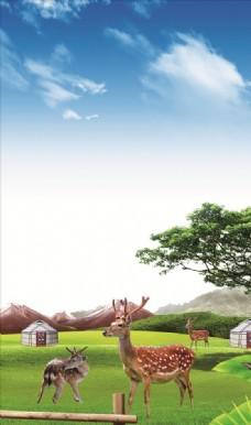 鹿 草原  蒙古包
