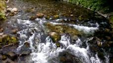 河流小溪视频素材