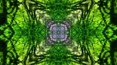 绿色抽象花纹万花筒视频