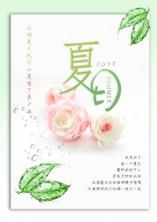 夏日花朵清新海报