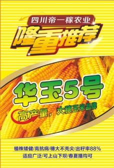 玉米种植海报
