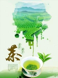 清香茶园茶文化