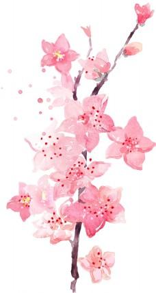 手绘粉色花朵元素