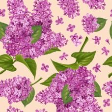 紫色丁香花无缝背景矢量素材