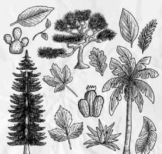 14款手绘树木矢量背景