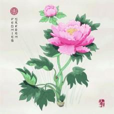 粉色牡丹花中国风图形花纹VI设计