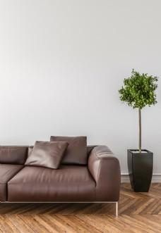 现代沙发盆景家装效果图