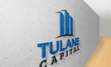 企业形象logo贴图样机