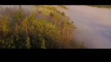 醉美森林视频