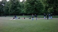 草坪人物树木视频