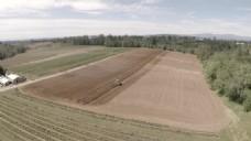 农田风景视频