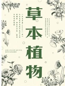 草本植物海报