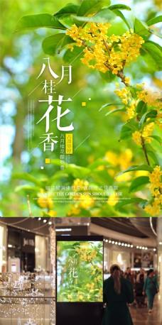 唯美八月桂花香微信微博配图海报设计