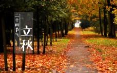二十四节气立秋秋景