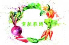 有机农场水彩蔬菜水果边框