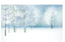 梦幻冬天雪景森林插画