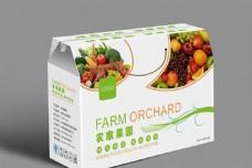 水果蔬菜包装效果图
