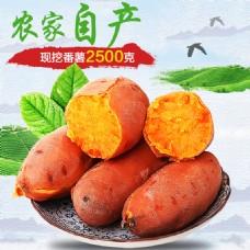 农家自产番薯红薯主图