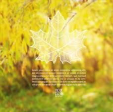 秋季落叶背景图