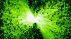 绿色抽象植物视频素材