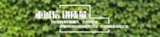 苗圃网站首页banner海报