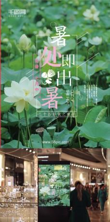 清醒文艺绿色大图夏处暑节气莲花海报模板
